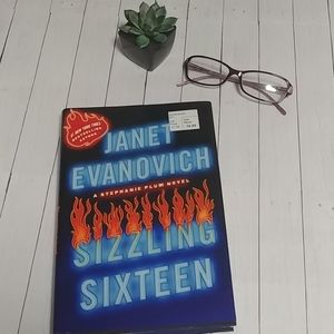 Sizzling Sixteen Book